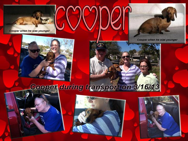 copper-collage1