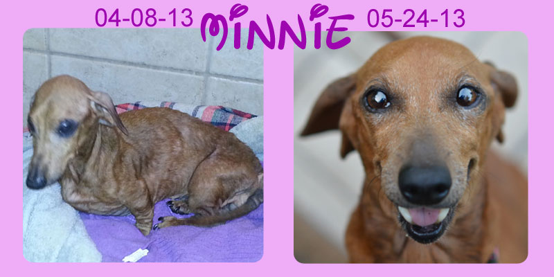 minnie-before-after
