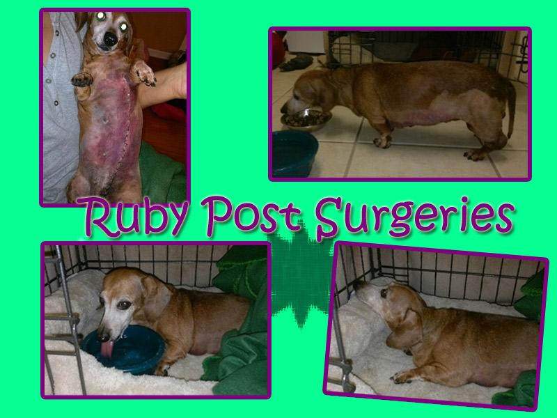 post-surgeries