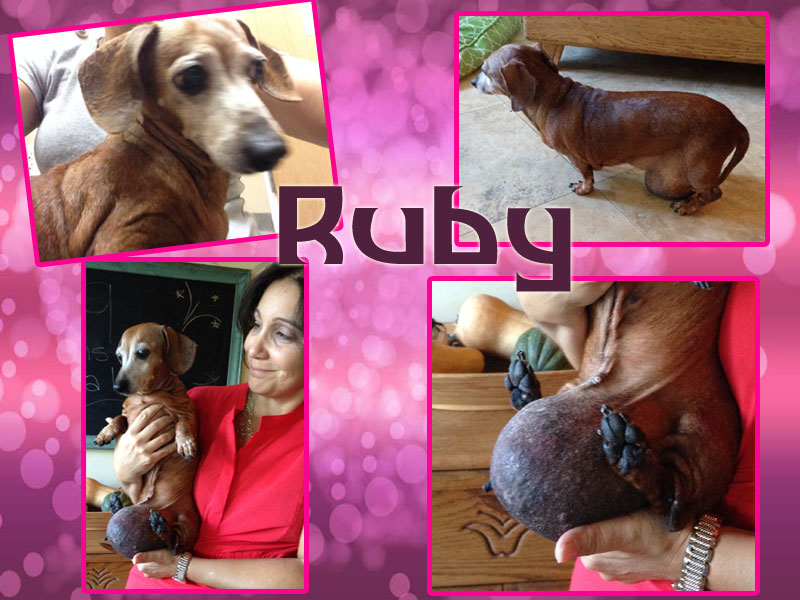 ruby-collage1