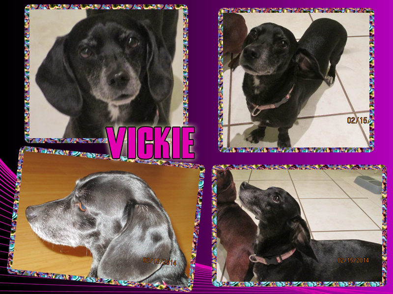 vickie-collage2