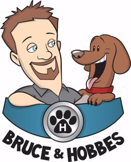 Image result for bruce & hobbes logo